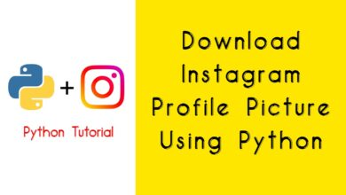 Download Instagram Profile Picture Using Python